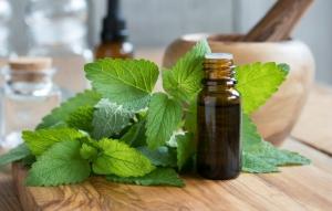 Holistik Aromaterapi İnzivasi - Bodrum - 2019